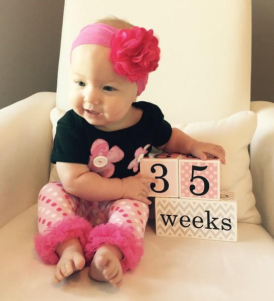 35 weeks 1