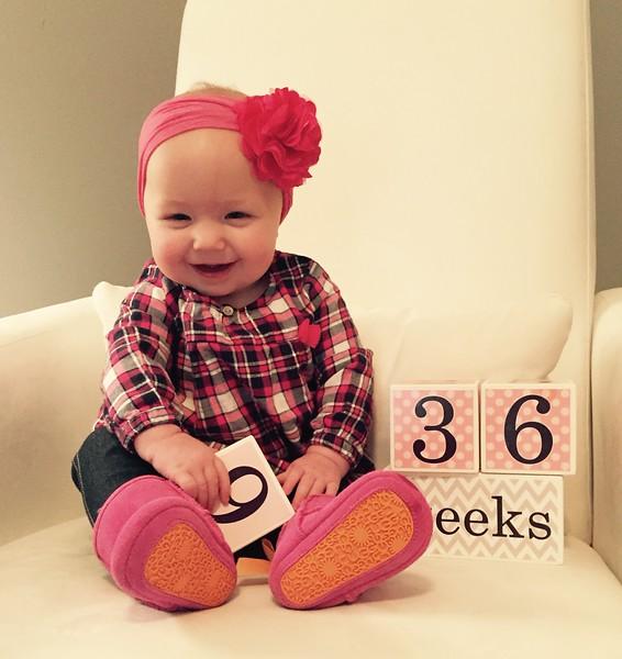 36 weeks 1