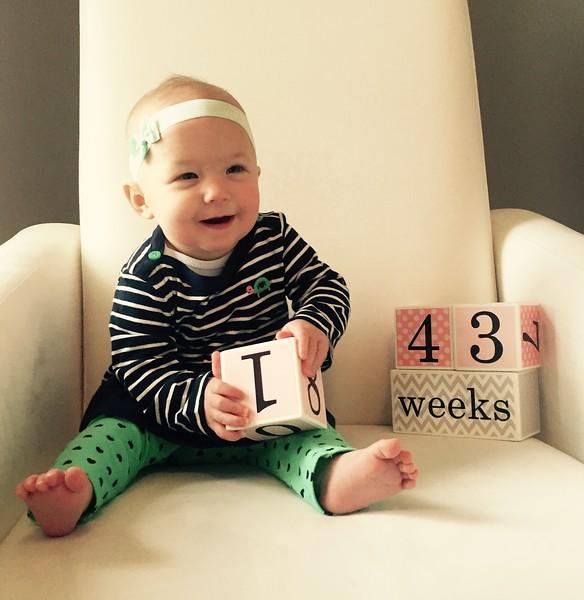 43 weeks 1